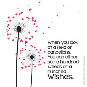 When you look at a field of dandelions, you can either see a hundred weeds or a hundred wishes. Source: Pinterest