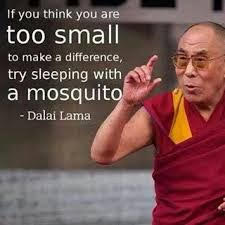 If you think you are to small to make a difference try sleeping with a mosquito